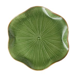 dinner plate grenn gloss with brown rim lotus