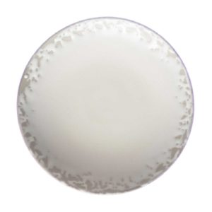bread and butter plate ceramic plate dining