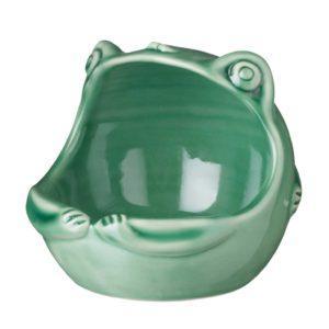 frog ice cream bowl