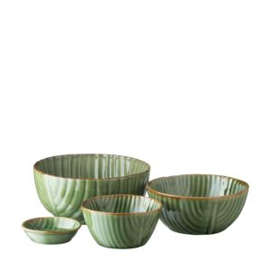 banana leaf collection pasta bowl rice bowl sauce dish soup bowl